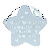 What Little Boys Are Made Of ~ Blue Star Wall Plaque